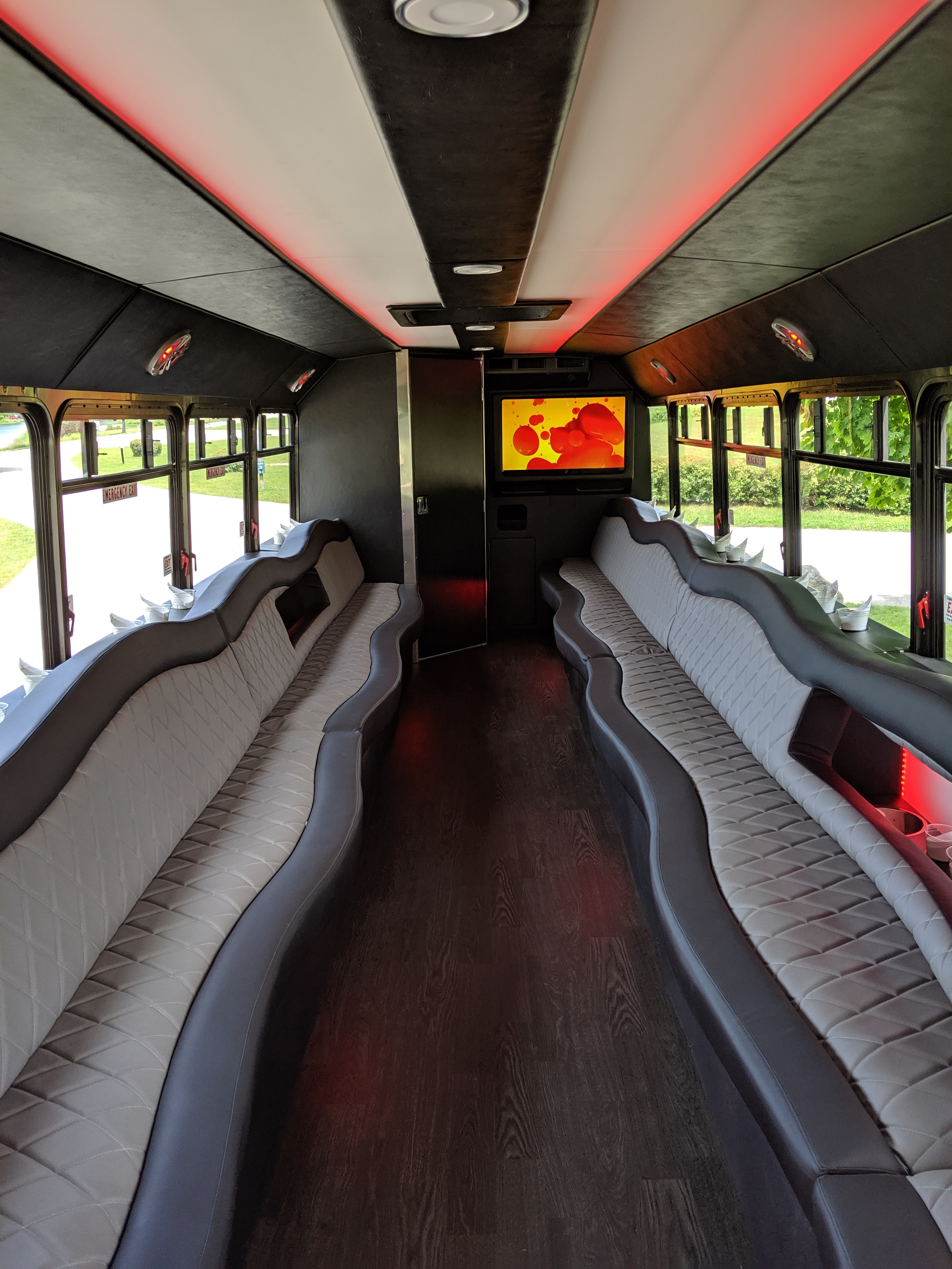 30 Passenger Luxury Limo Bus Interior 3